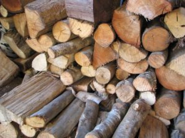 when fire doesn t burn timergara residents flay forest dept over ban on firewood