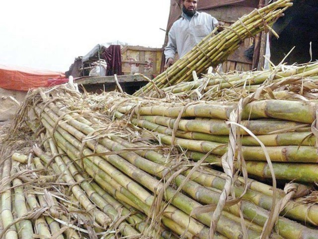 provinces to bear 50 burden of sugar export subsidy
