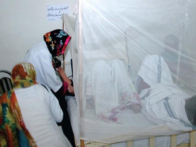 no insecticide spray despite looming dengue threat