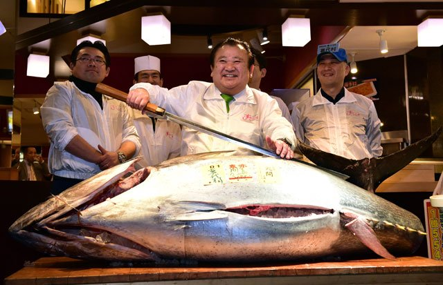 japan sushi boss pays 117 000 for endangered tuna