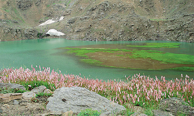 first ever tourism policy for k p launched in changla gali