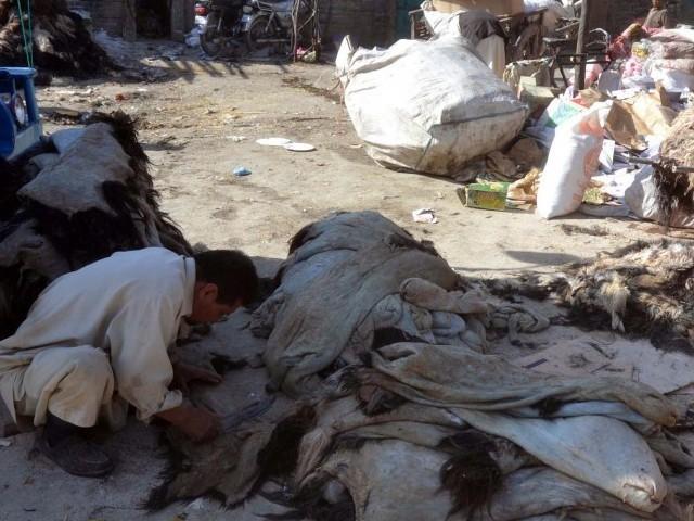 environmentally friendly ministry scci to establish sialkot tannery zone