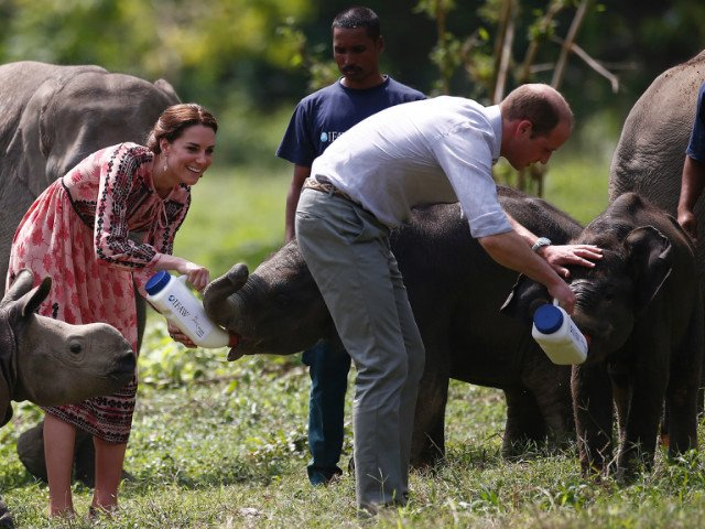 prince william and kate middleton landed in assam late tuesday photo afp