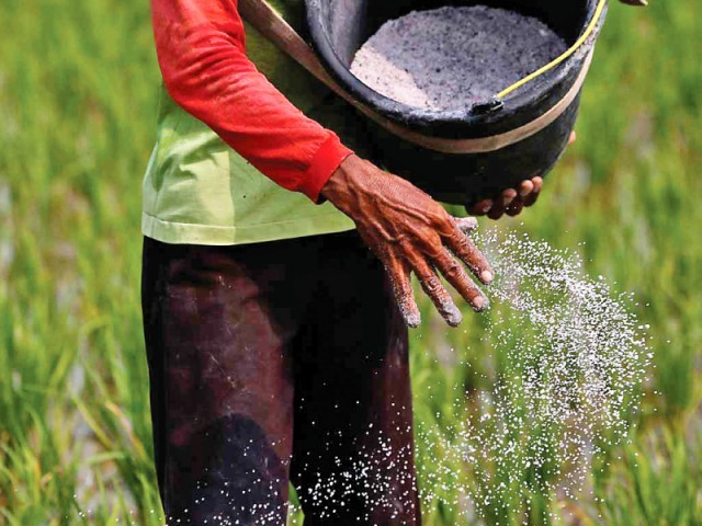 committee constituted to finalise steps to be taken for farmers welfare photo reuters
