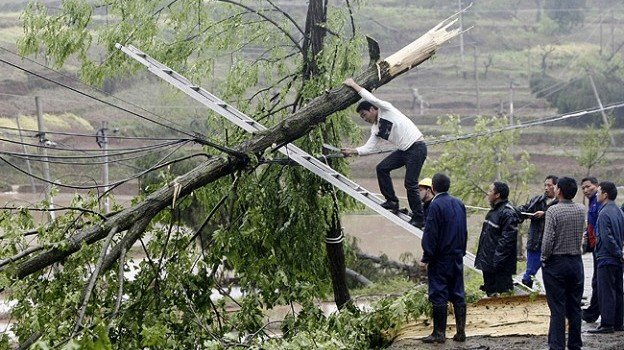 a file photo showing people clear away a damaged tree photo reuters