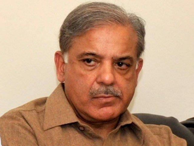 punjab chief minister shahbaz sharif photo app