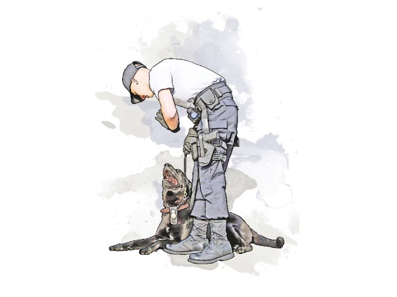 police dogs of the special branch have been assisting sweeps since 2010 illustration nabeel khan