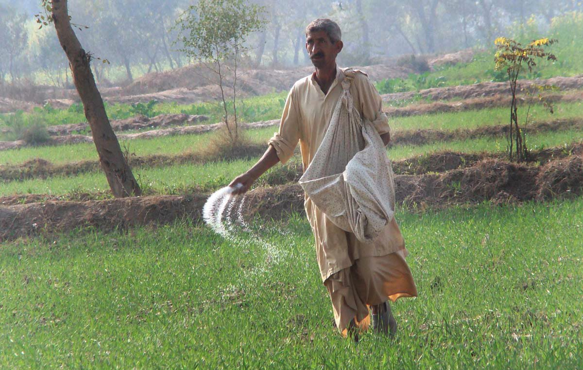 task force in the offing to boost farm sector
