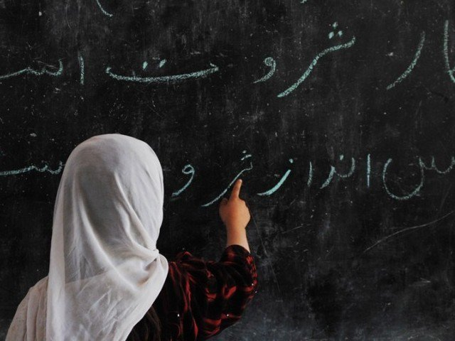 pulling focus education reports urged to be based on constituencies
