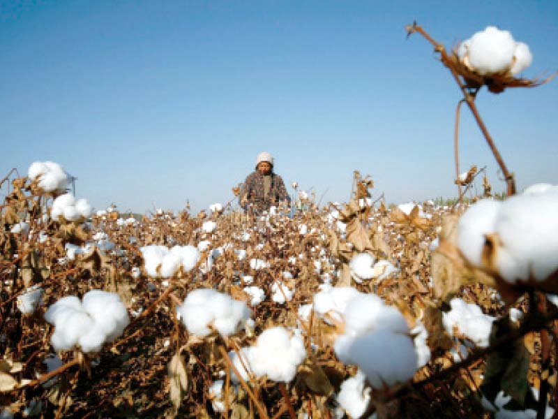 Exporters seek duty-free import of cotton yarn
