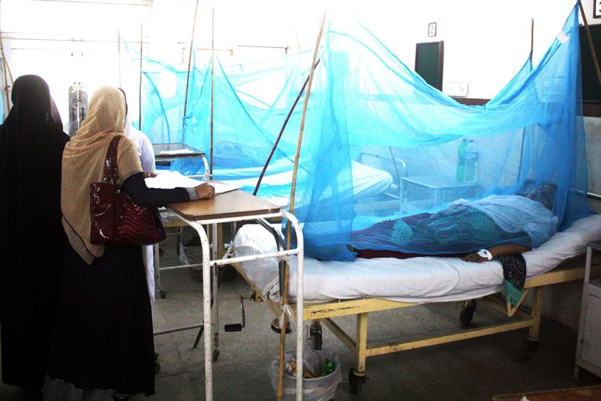 fight against disease sharp drop in dengue cases k p officials