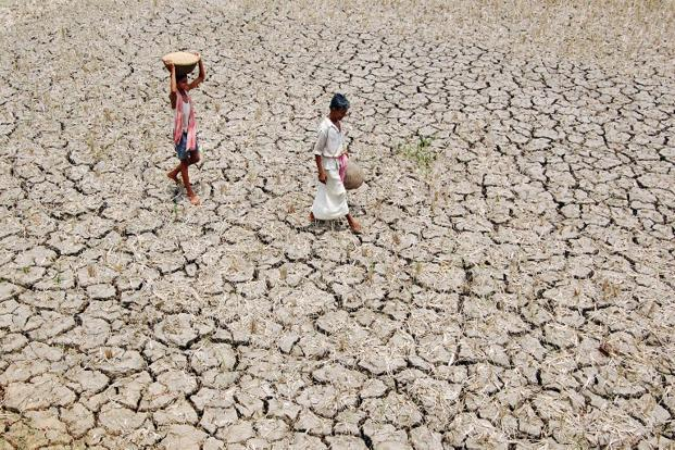 india is in the grip of its worst water crisis in years with 330 million people suffering from drought photo afp