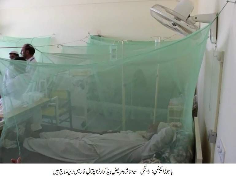health scare minister calls for anti dengue plan