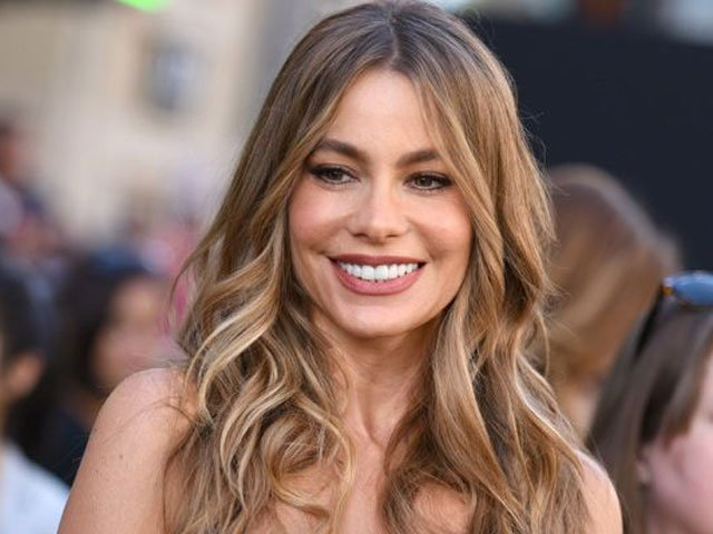 actress sofia vergara faces lawsuit from her own embryos