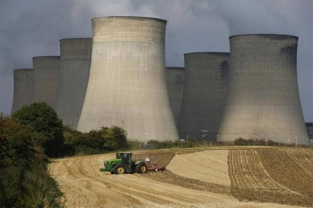 maple leaf wins power generation licence