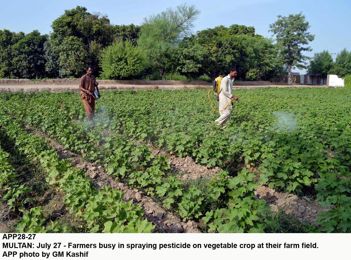facilitating farmers balloting to provide levelling units held