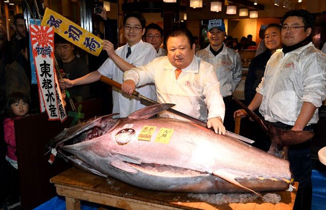 bluefin tuna snapped for 636 000 at japan auction