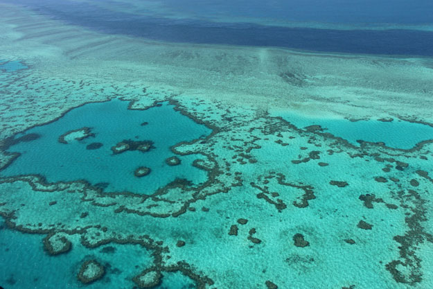 this file photo taken on november 20 2014 shows an aerial view of the great barrier reef off the coast of the whitsunday islands along the central coast of queensland photo afp