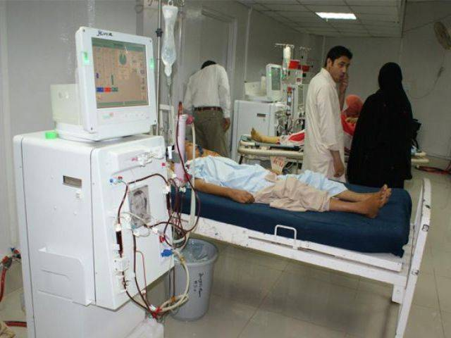 the focus of the programme is to identify weaknesses at medical facilities in k p photo online