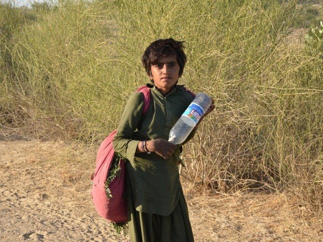 a young boy in search of water in tharparkar photo mukesh raja