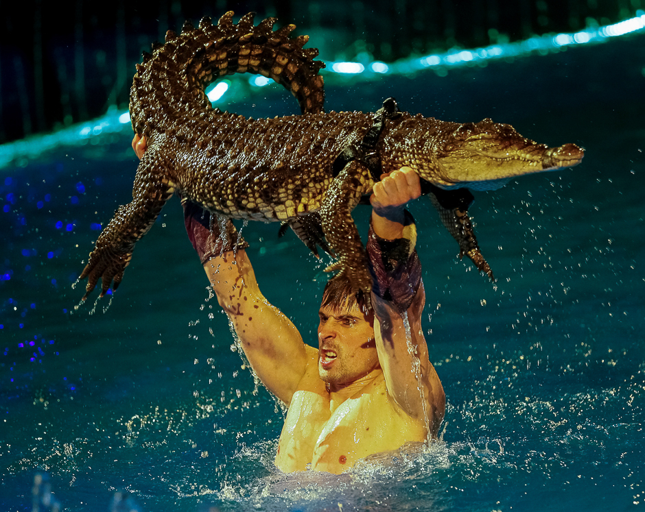 a crocodile and its tamer perform during the presentation of the new show quot water and fire quot at the national circus in kiev ukraine photo reuters