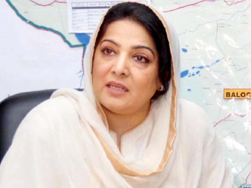 minister of state for it anusha rehman photo file