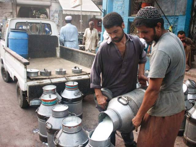 cjp for stricter action against substandard milk