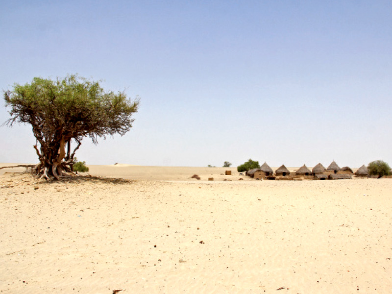 nothing to drink in thar