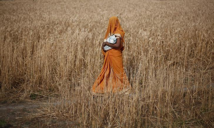 A woman carries her baby as she walks through a wheat field, in Amroha district in Uttar Pradesh April 17, 2014. PHOTO: REUTERS