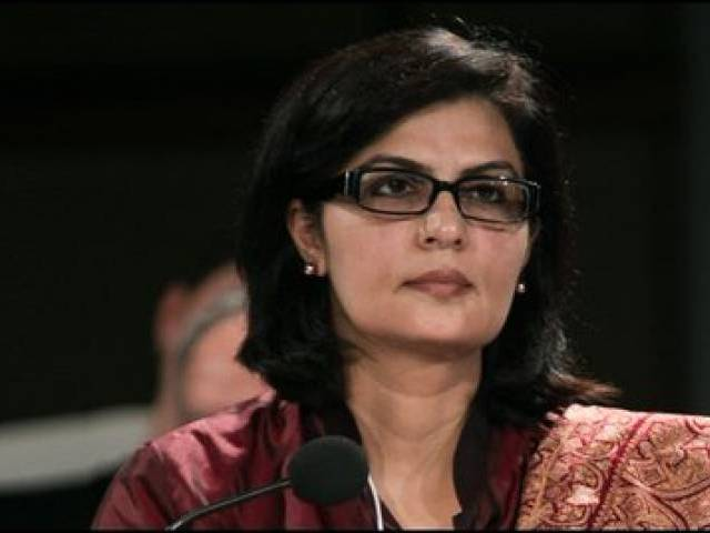 dr sania nishtar photo twitter