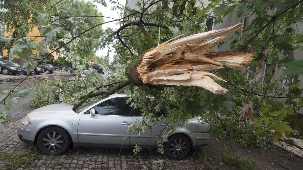 four dead as storms ravage poland
