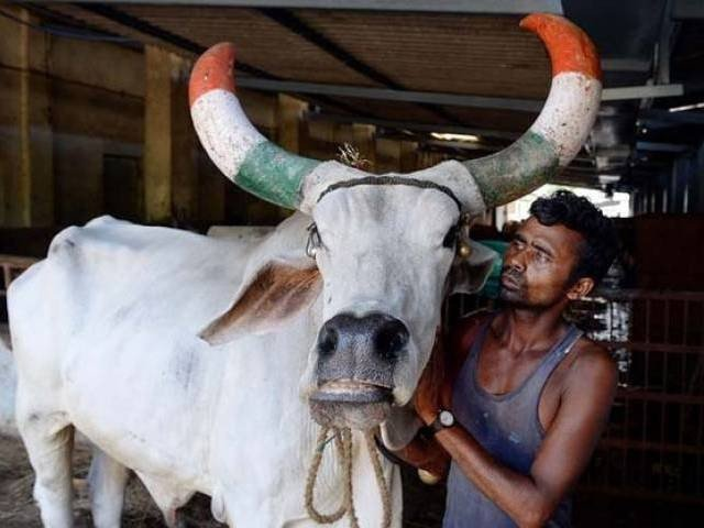 police said a hindu mob raided a dairy farm and attacked five dalits skinning a buffalo photo afp file
