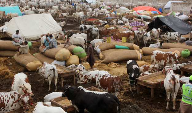 This is the second religious festival after Eidul Fitr which Muslims across th globe will celebrate under the shawdow of Covid-19 pandemic. PHOTO: FILE