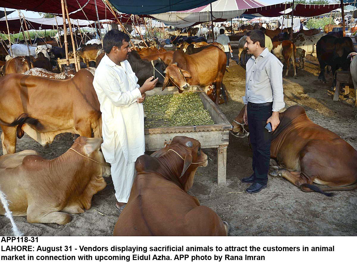 Special stalls and kiosks will provide fodder at discounted rates. PHOTO: APP
