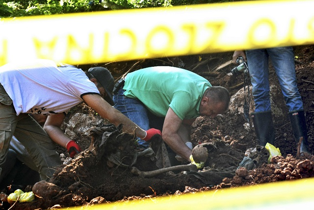 Bosnian forensic expert, Murat Hurtic inspects a set of human remains, at the site of a newly discovered mass grave in the village of Tugovo, near Eastern-Bosnian town of Vlasenica, on Wednesday.  PHOTO: AFP
