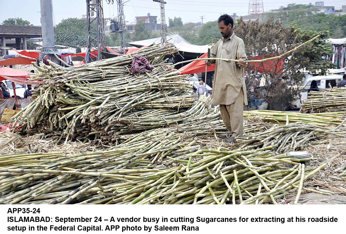 farmers demand ban on inter provincial sale of cane crop