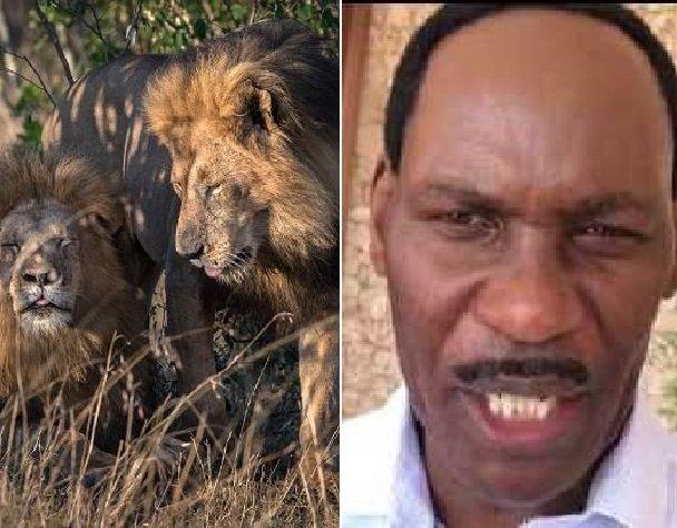 Homosexual Lions Kenya