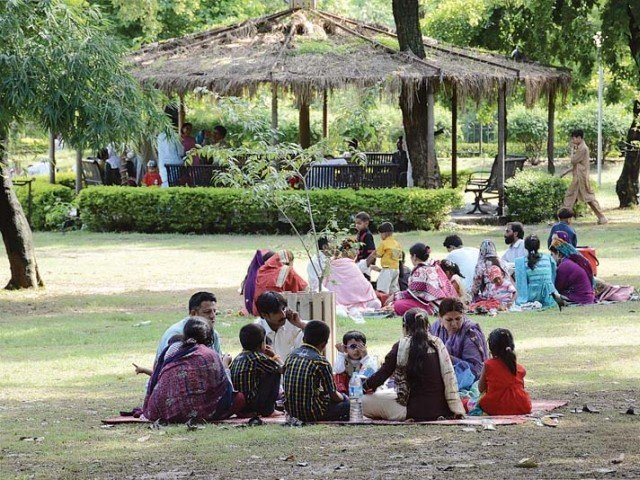 families at a picnic in a park photo express