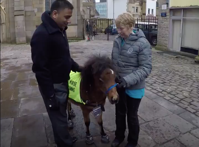 digby the eight month old guide horse with mohammed salim patel left and trainer katy smith photo courtesy bbc