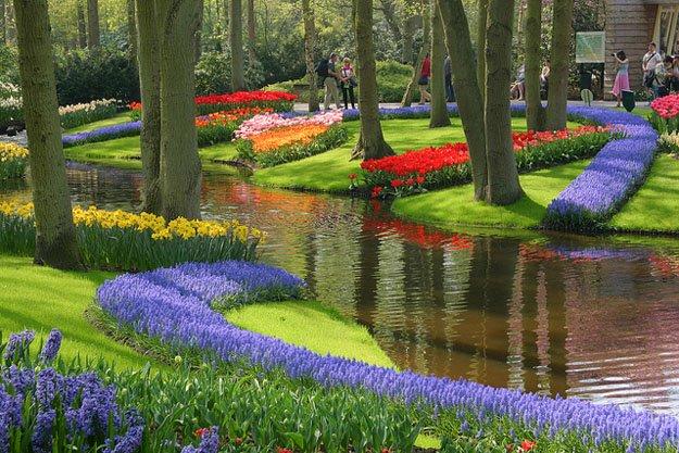 govt wants to establish dubai like gardens photo file
