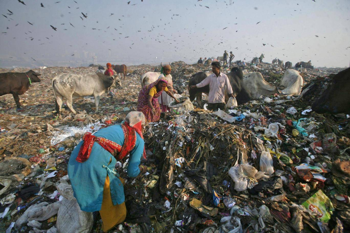 waste collectors search for recyclable material at the ghazipur landfill in new delhi photo reuters