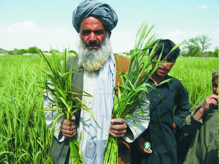 agriculture training institute in quetta is being strengthened at a cost of rs500 million photo courtesy https www usaid gov pakistan economic growth agriculture