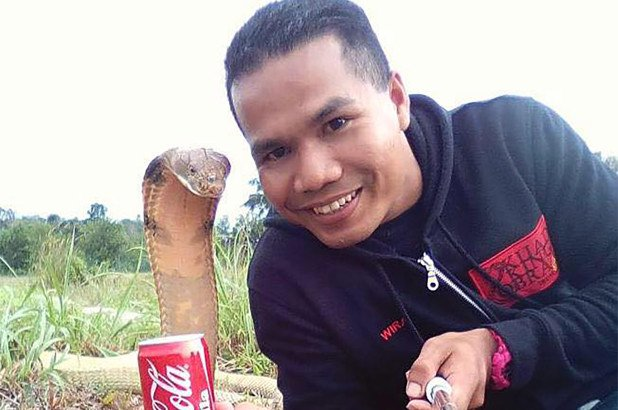 malaysia snake whisperer dies after cobra bite