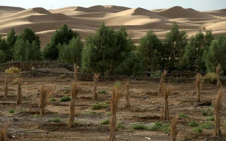 scientists to publish first ever land health report