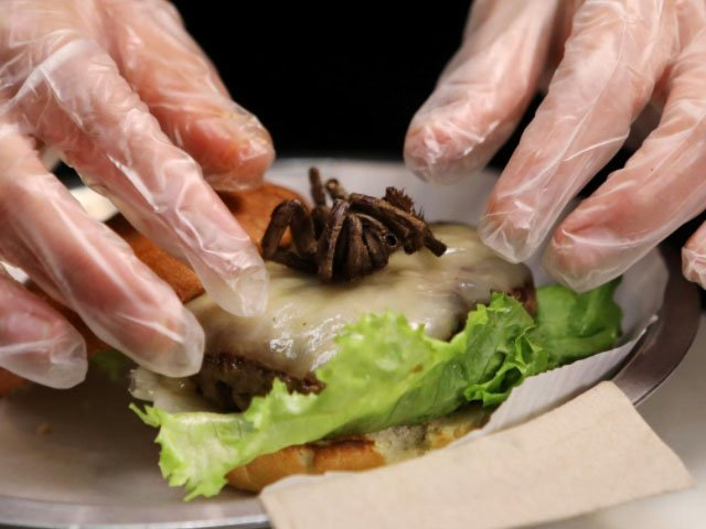 live tarantula served as topping in us burger joint