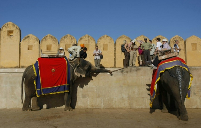 Tens of thousands of tourists visit the Amer Fort  PHOTO: AFP