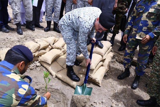 navy initiates mangroves plantation drive