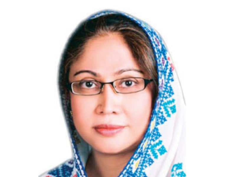 In PS 10 Larkana, where Faryal Talpur has filed her nomination, an independent candidate advocate Qadir Bux Bhatti contended that she holds an Iqama of Dubai and that she also heads an offshore company. PHOTO: FILE