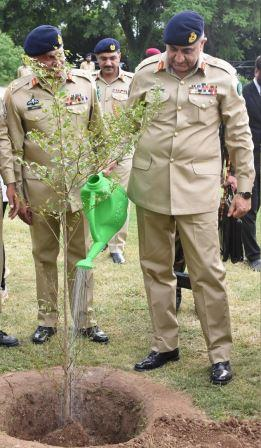 army to plant 10m saplings in current season
