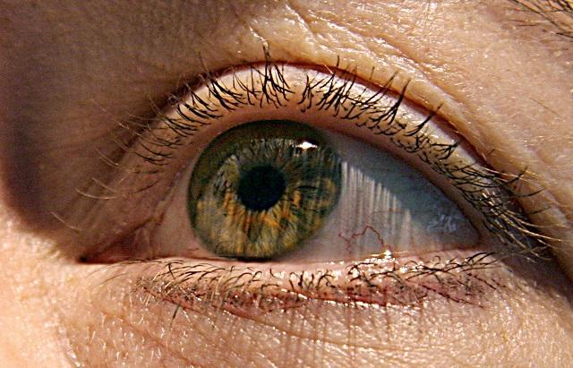 eye exam may predict alzheimer s disease
